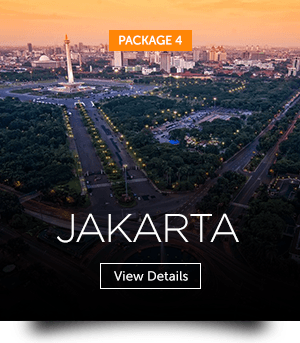 indopackages_04