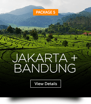 indopackages_05