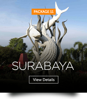 indopackages_11