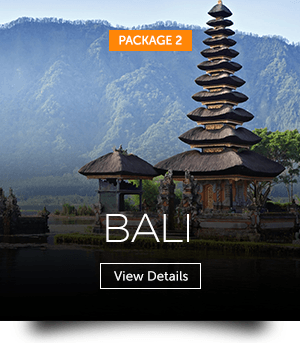 indopackages_02