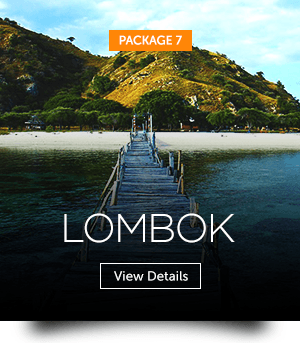indopackages_07