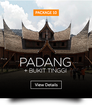 indopackages_10